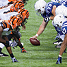 Thrilling Wildcard Matchups Kickoff 2013 NFL Playoffs