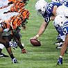 Thrilling Wildcard Matchups Kickoff 2013 NFL Playoffs