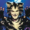 Cats Broadway Revival in the Works for Summer 2016