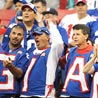 New York Giants Look Towards a Promising 2009